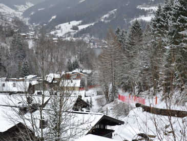 Chalet Zell