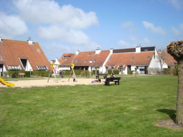 Ferienhaus Albatros 24