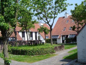 Ferienhaus Aalscholver 4