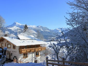 Ferienhaus Chalet Sonneck