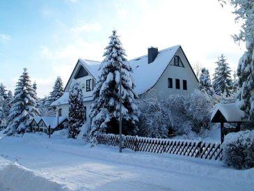 Ferienhaus Bruns im Harz