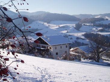 Ferienwohnung Runker-Hof