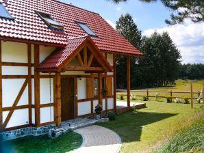 Ferienwohnung Przytulny wiejski domu nad jeziorem na Kaszubskiej wsi