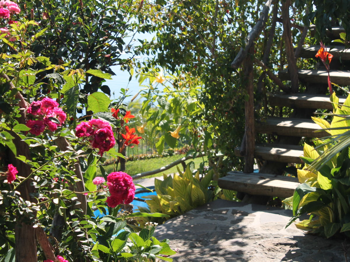 Cottage levada guesthouse arco da calheta firma calhau - Cottage garten terrasse ...