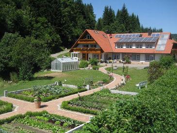 Ferienwohnung 3 Hetzlenmühle - Erdgeschoss