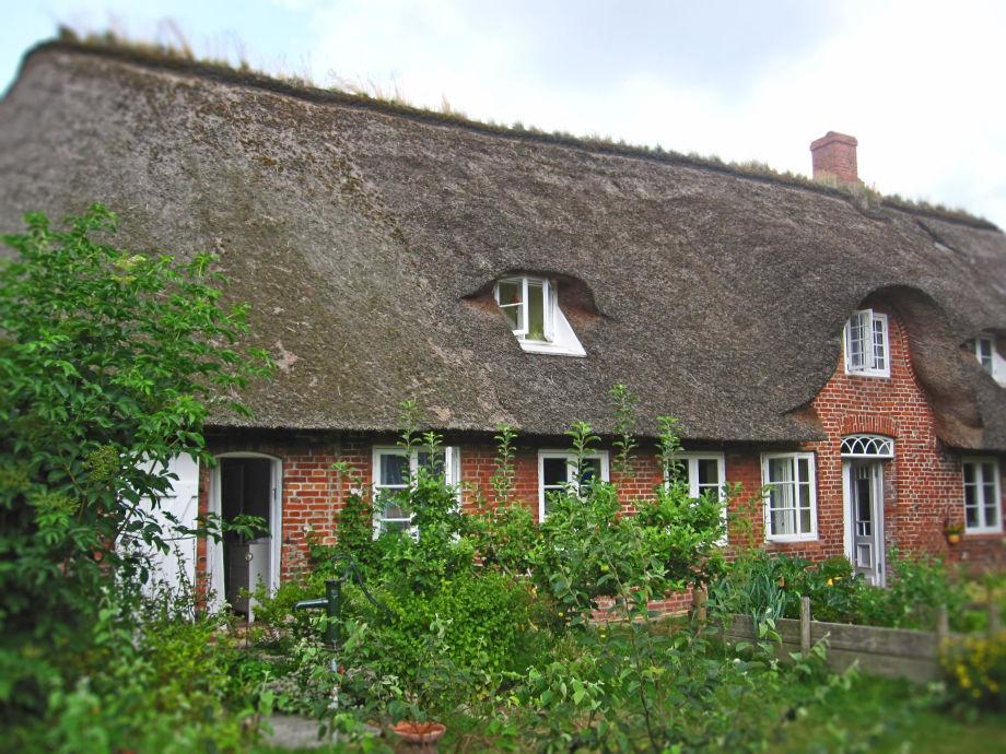 Ferienwohnung unter Reet im Bauernhaus von 1872.
