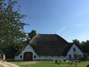Ferienwohnung Storchennest auf dem Hamkenshof