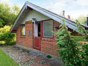 Ferienhaus Læsø, Haus-Nr: 09503