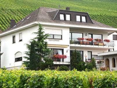 Wine estate & boarding house Weingut Abteihof
