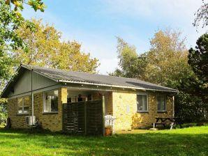 Ferienhaus Dannemare, Haus-Nr: 53041