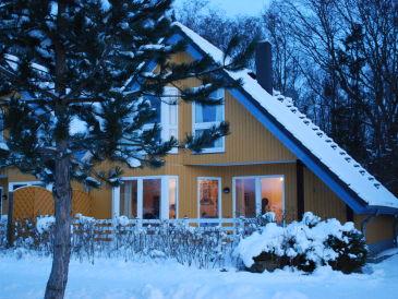 Ferienhaus Seemöwe 2