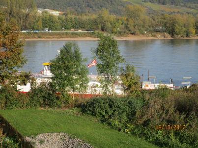 Rheinpark am Fähranleger