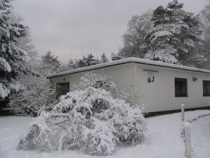 Bungalow im Ferienpark De Witte Wieven