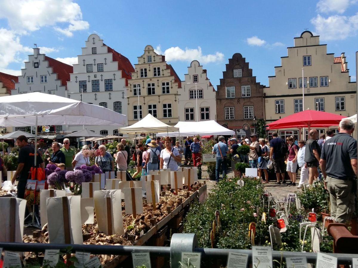 Frauen Friedrichstadt