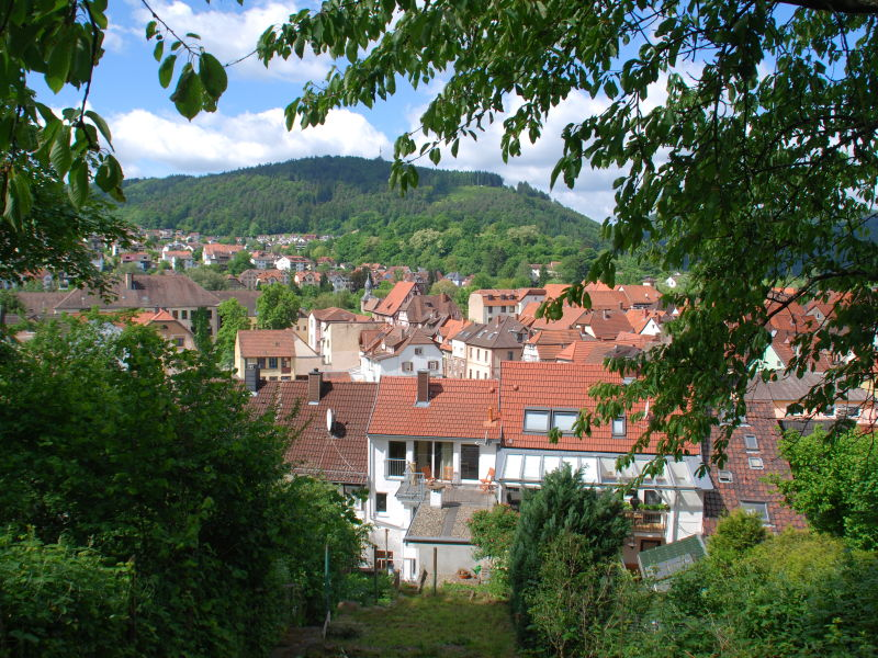 Holiday house Neckar 40