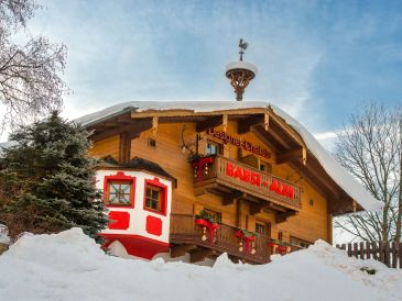 Holiday apartment Babsi-Alm Type E