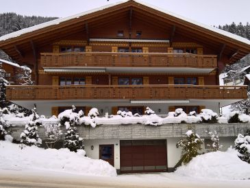 Holiday apartment Chalet Alpenblume