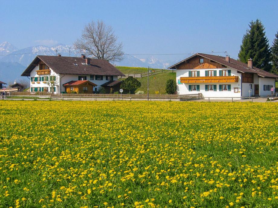 Häuser im Frühling
