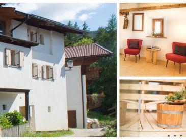 Ferienhaus Raabenhof