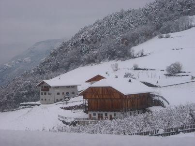 Enzian - Guntschöller Hof