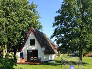 Ferienhaus Villa Huhn, Reetdach