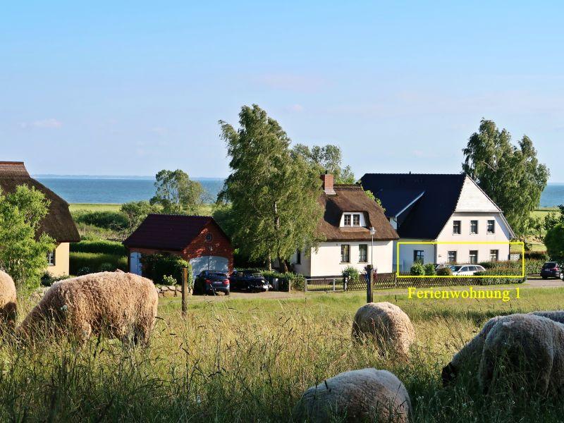 Ferienwohnung mit Boddenblick