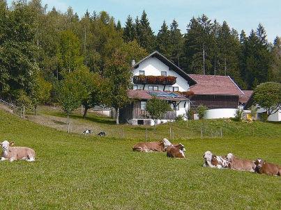 Ferienhof-Rosenlehner