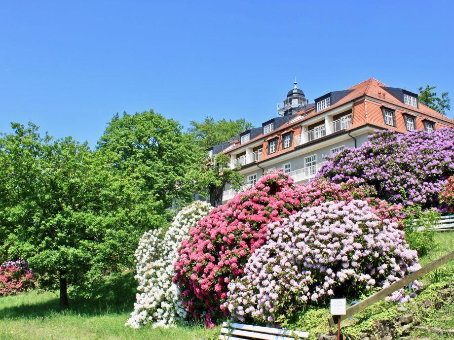 Haus König Albert vom Weinberg aus gesehen