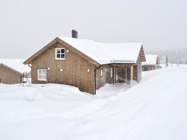 Ferienhaus HAFJELL 53694