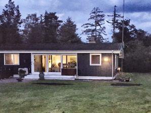 Ferienhaus Gedser, Haus-Nr: 55488