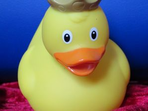 Ferienwohnung Willingen -Duckstop-