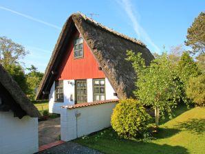 Ferienhaus 063 - Kegnæs, Als