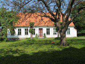 Ferienhaus Steffenshagen XL