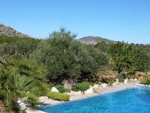 Villa in Pollensa with private pool