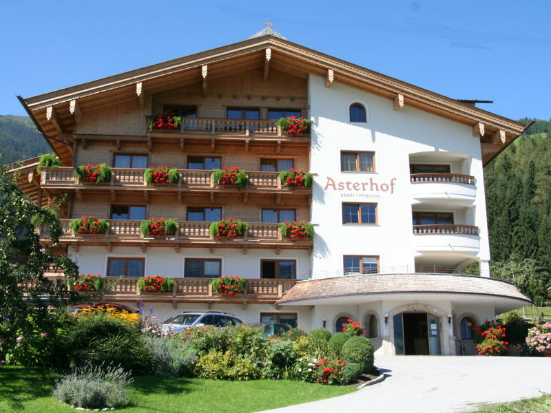 Apartment in the Aparthotel Asterhof