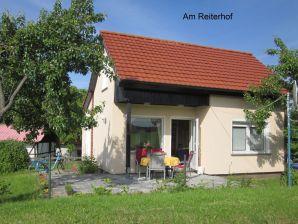 Ferienhaus Waldblick in Steffenshagen