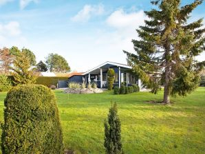Ferienhaus Slagelse, Haus-Nr: 53035