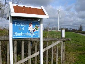 Ferienwohnung Ferienhof Blankenhausen