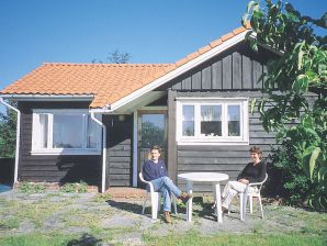Ferienhaus Flatråker, Haus-Nr: 10911
