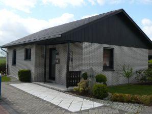 Ferienhaus Deichkieker H10