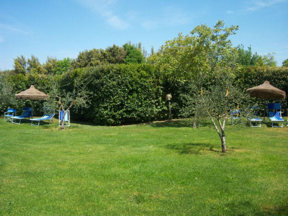 Ferienwohnung castagno weingut tenuta toskana gambassi for Garten pool 4m