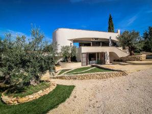 0303 Villa Lilou, 8P. Castillon-du-Gard