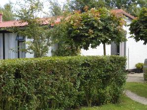 Holiday apartment De Wonne - Texel 1