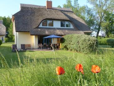 Ferienhaus Eibe 1