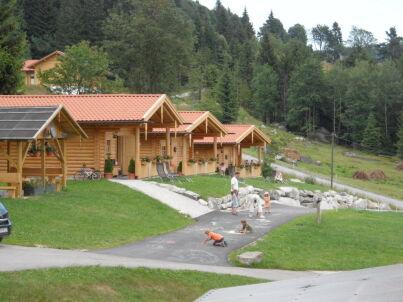 Kuhstall - Erlebnis-Bio-Berg-Bauernhof