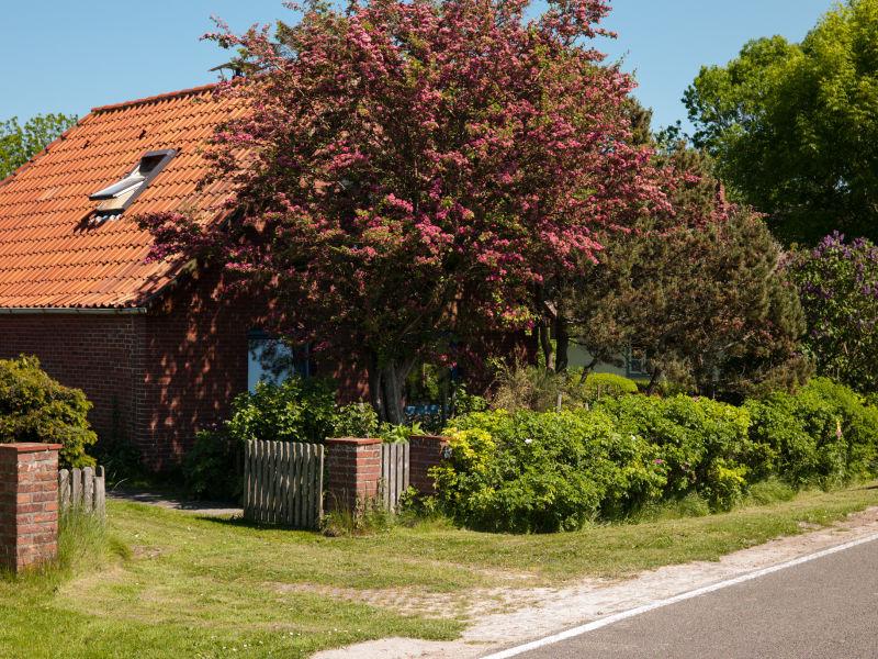 Ferienhaus Am Sommerdeich