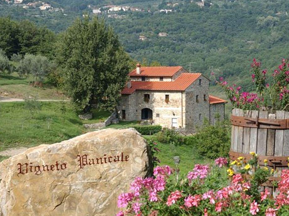 Außenaufnahme holiday in a wine estate