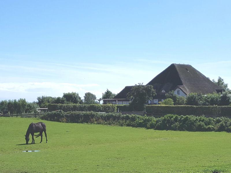 Bauernhof Weitblick