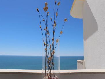 Apartment Vista Panoramica