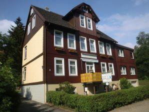 Harzhaus am Brunnen Ferienwohnung 2